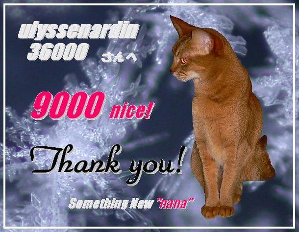 9000nice!to ulyssenardin36000さん.JPG