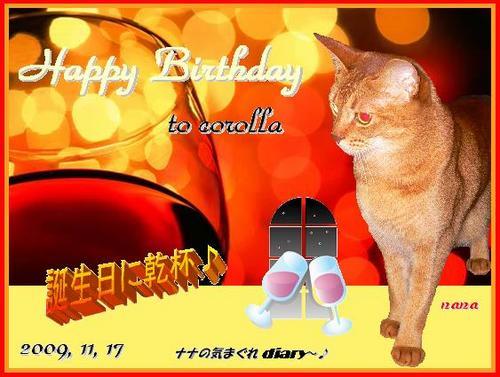 corollaさん-birthday!!.JPG