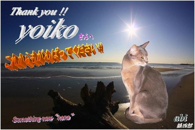 yoikoさん.jpg